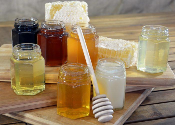 medus degustacija